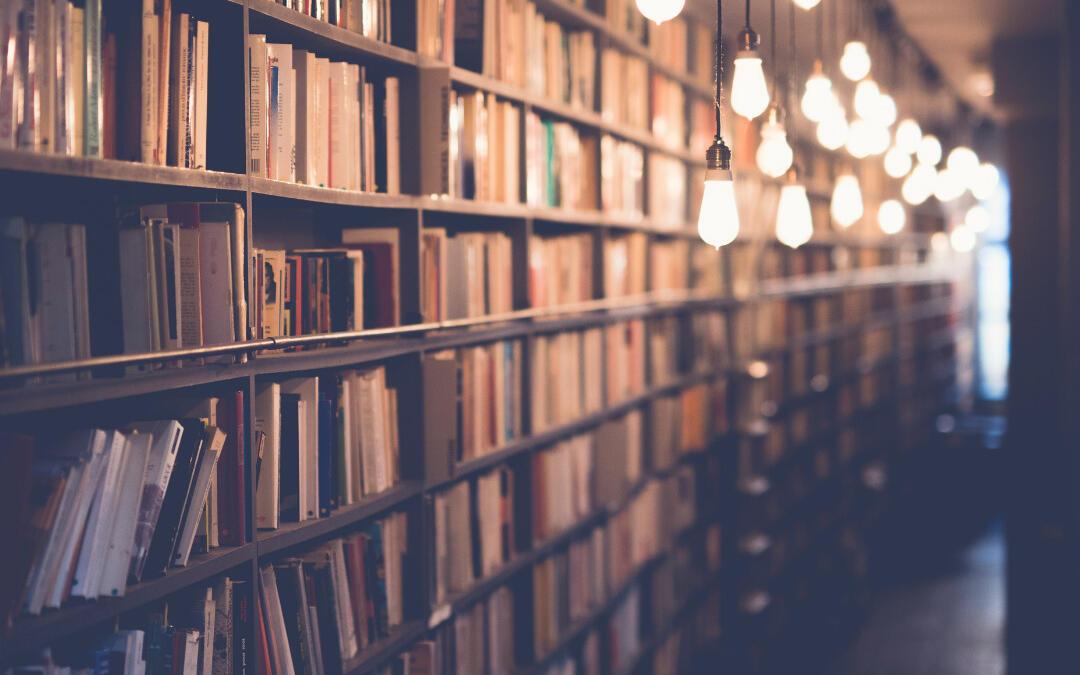 Bibliothek im Griepe Haus
